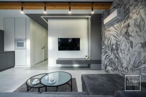 apartament-golden-salon-telewizor